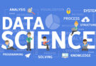 data science role
